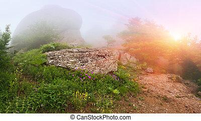 sommer, bjerge., landskab, solopgang, tågede