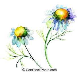 sommer, blomster