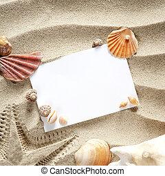 sommer, copyspace, seestern, schalen, raum, sand, leer