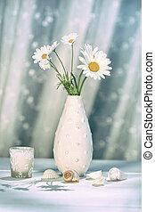 sommer, gänseblümchen, in, blumenvase