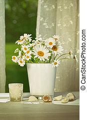 sommer, gänseblümchen, vor, fenster
