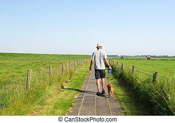 sommer, Gehen, hund, landschaftsbild, Mann