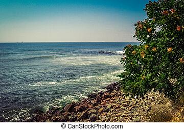 sommer, hav, baggrund.