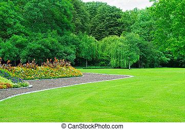 sommer, have, hos, plæne, og, blomst have