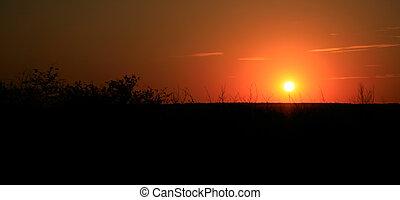 sommer, himmelsgewölbe, szene, \', s, sonnenuntergang