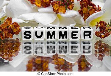 sommer, hos, blomster