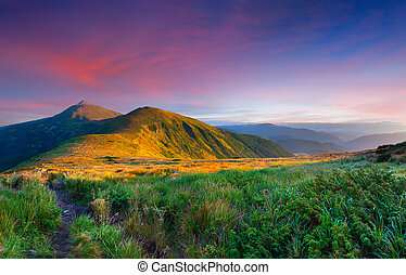 sommer, landskab, bjerge., solopgang, farverig