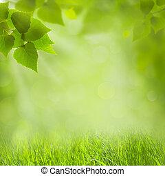 sommer, naturlig, baggrunde, by, din, konstruktion