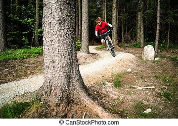 sommer, Radfahren, berg, Radfahrer, wald, Reiten