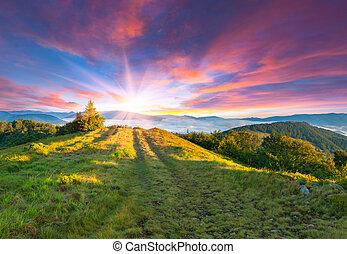 sommer, solnedgang, bjerge., farverig