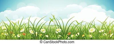 sommer, vektor, landschaftsbild