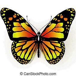 sommerfugl, blå, isoleret farve