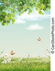 sommerfugl, branch, træ, grøn baggrund, græs