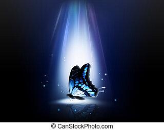 sommerfugl, nat