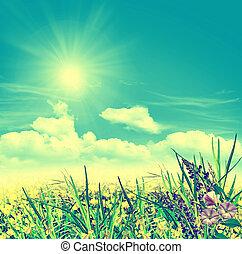 sommerlandschaft, mit, feld, blumen, auf, a, hintergrund, von, blauer himmel, und, wolkenhimmel
