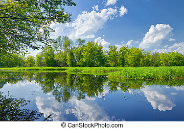 sommerlandschaft, mit, narew, fluß, und, wolkenhimmel, auf,...
