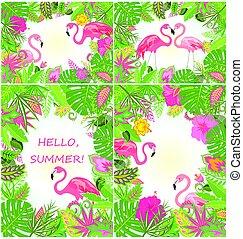sommerlige, tropisk, baggrunde, hos, eksotiske blomster, og, flamingo