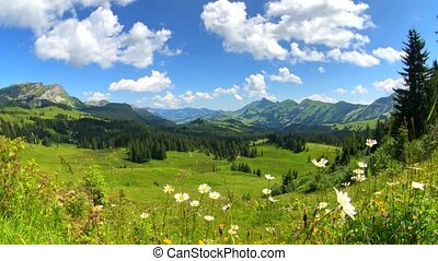 sommerzeit, berg, panoramisch, landschaftsbild