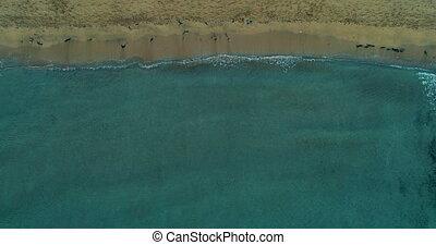 sommet, plage, vue