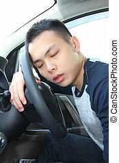 somnolent, chauffeur