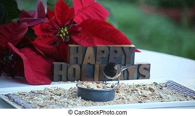 songbird happy holidays