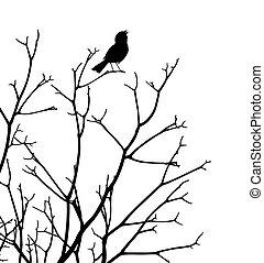 Songbird - Editable vector silhouette of a bird singing at...