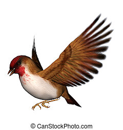 3D digital render of a flying scarlet finch isolated on white background