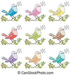 songbirds, cantando, pássaros, coloridos