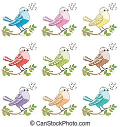 Songbirds Colorful Singing Birds