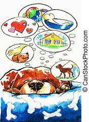 sonhos, cão