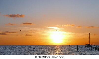 sonne, aus, karibisches meer, steigend