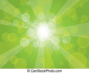 sonne- strahlen, auf, grüner hintergrund, abbildung