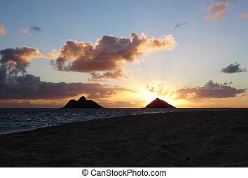 sonnenaufgang, hawaii