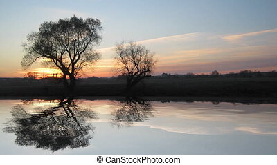 sonnenaufgang, landschaftsbild, mit, baum, und, see