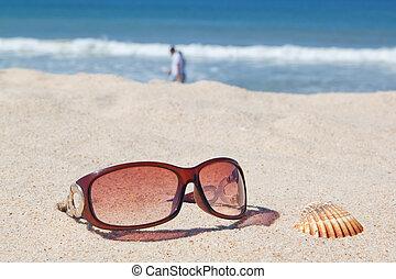 sonnenbrille, strand, und, shells.