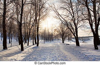 sonnenkollektoren, winterlandschaft