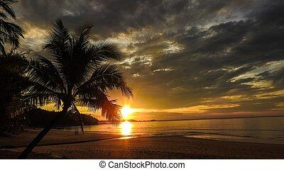 Sonnenuntergang am Palmenstrand