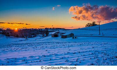 sonnenuntergang, aus, a, schneebedeckte , bauernhof- feld, in, ländlich, york, grafschaft, pennsylvania.