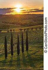 sonnenuntergang, aus, der, hügel, von, toscana, italien