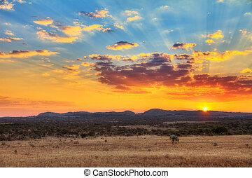 sonnenuntergang, landschaftsbild
