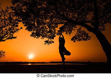 sonnenuntergang, silhouette, frau, joga, schwanger