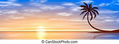 sonnenuntergang, sonnenaufgang, mit, palme