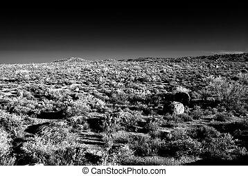 Mountain in the Sonora desert in central Arizona USA