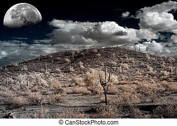 Sonora Desert Moon - Moon Desert storm over the southwestern...