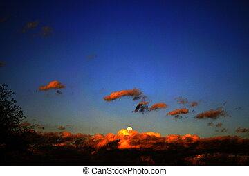 Sonoran Desert Dawn