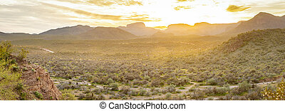 Sonoran Desert Panorama at Sunset