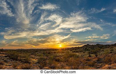 sonoran, encima, ocaso, desierto