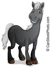 sonriente, caballo negro