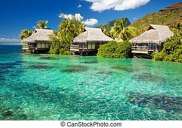 sopra, acqua, strabiliante, bungalow, passi, laguna