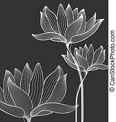 sopra, fiori, sfondo nero